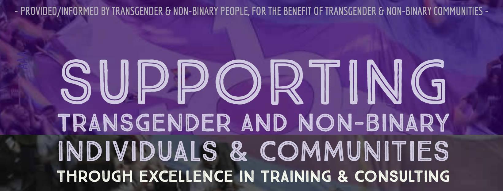 The Transgender Training Institute Banner